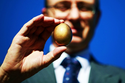 retirement nest egg, retirement planning, retirement solutions